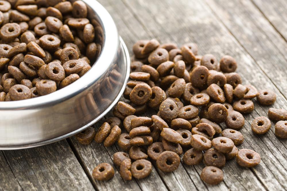 croquettes sans céréales chien
